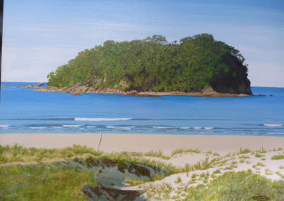 John Towers – Motuotau Island (Rabbit Island)