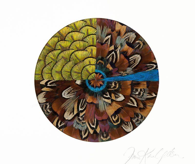 Fiona Kerr Gedson – GE Mandala Mini