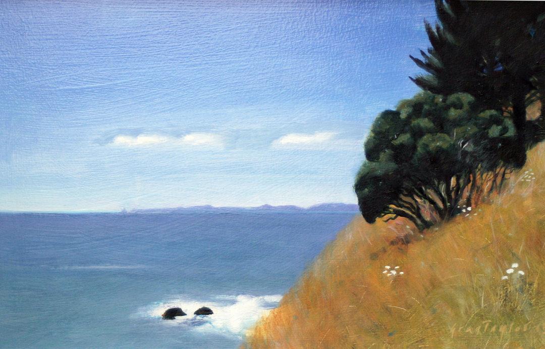Greg Taylor – Cape Colville