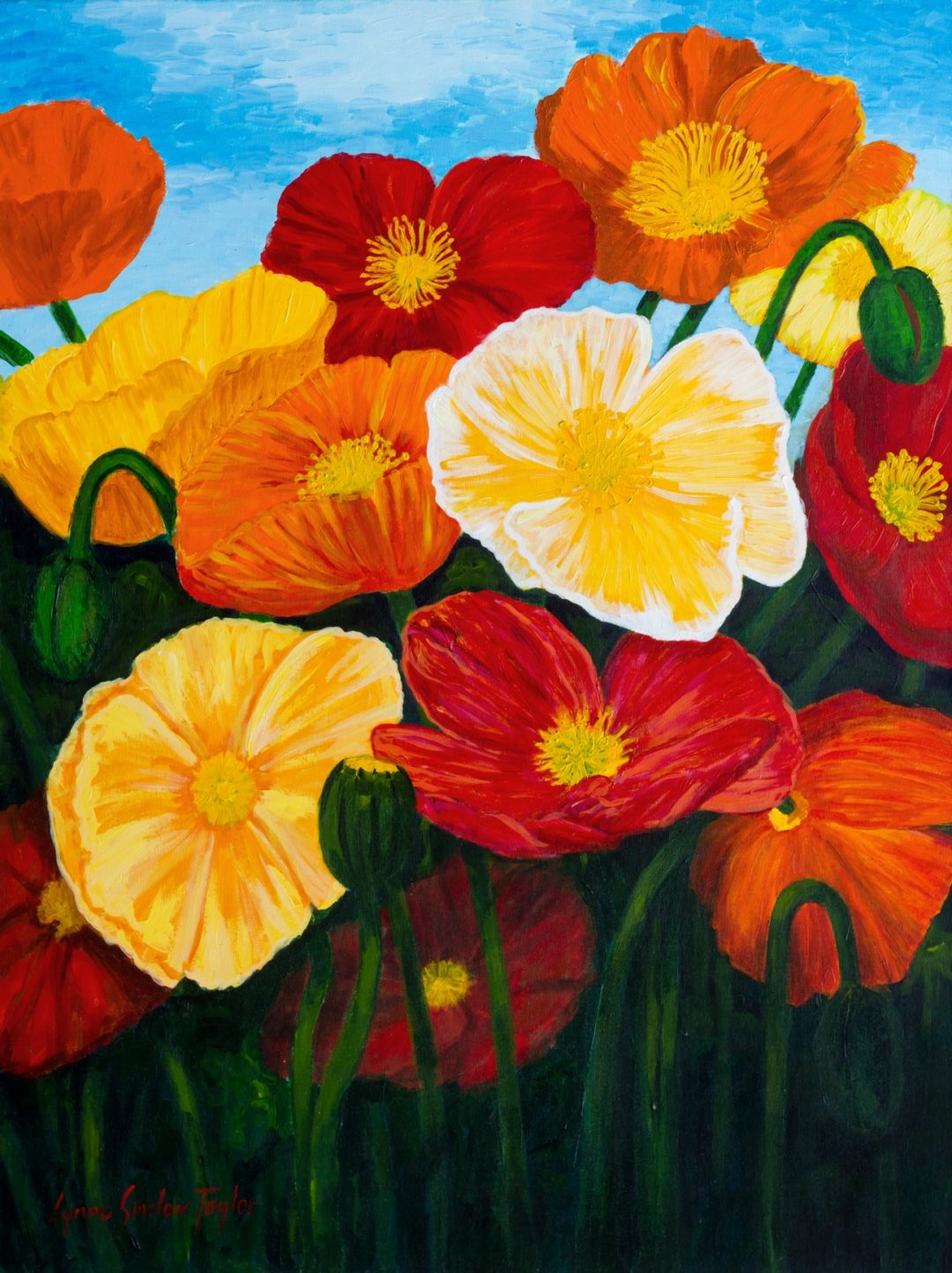 Lynne Sinclair Taylor – Joyful Poppies