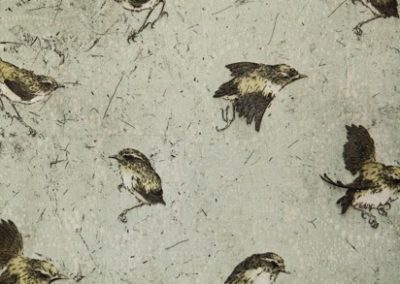 Ben Reid – Ruffled Feathers